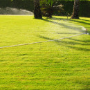 Show Your Lawn Some Love with a Professionally Installed Irrigation System