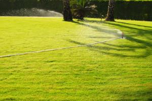 180895187-irrigation system